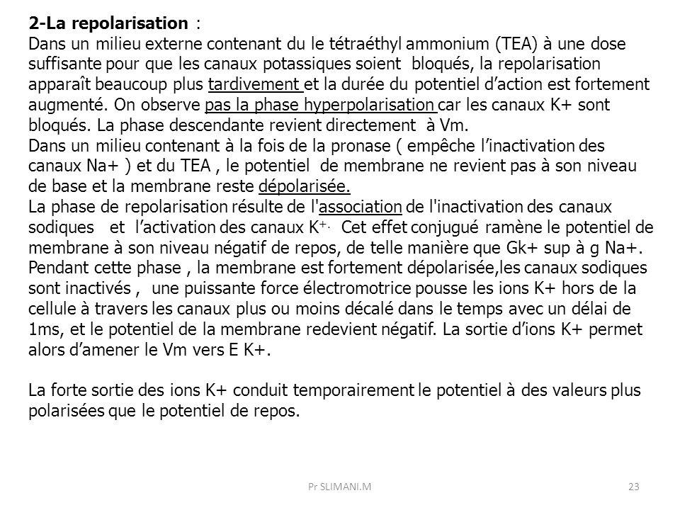 Pr SLIMANI.M23 2-La repolarisation : Dans un milieu externe contenant du le tétraéthyl ammonium (TEA) à une dose suffisante pour que les canaux potass