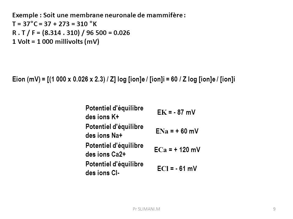 Potentiel d'équilibre des ions K+ E K = - 87 mV Potentiel d'équilibre des ions Na+ E Na = + 60 mV Potentiel d'équilibre des ions Ca2+ E Ca = + 120 mV