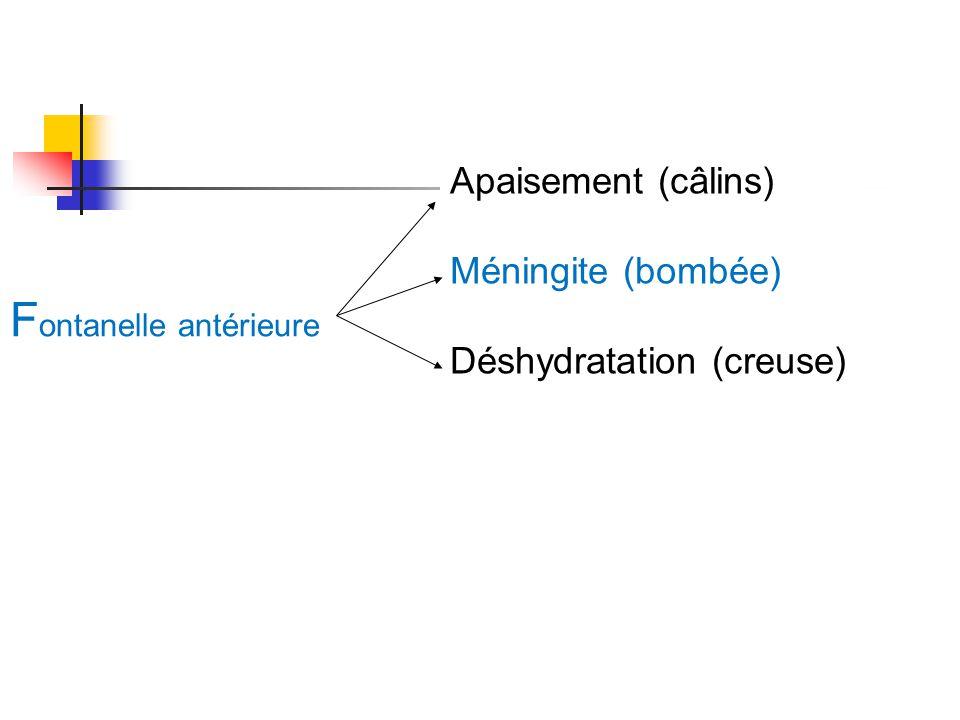 F ontanelle antérieure Apaisement (câlins) Méningite (bombée) Déshydratation (creuse)