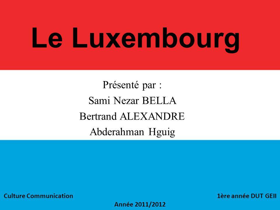 Le Luxembourg Présenté par : Sami Nezar BELLA Bertrand ALEXANDRE Abderahman Hguig Culture Communication 1ère année DUT GEII Année 2011/2012