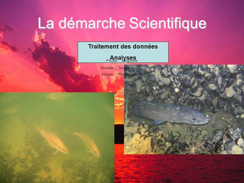 La démarche Scientifique Traitement des données Analyses MostelleTacaud CongreBlennie pilicorne PoulpeLangouste