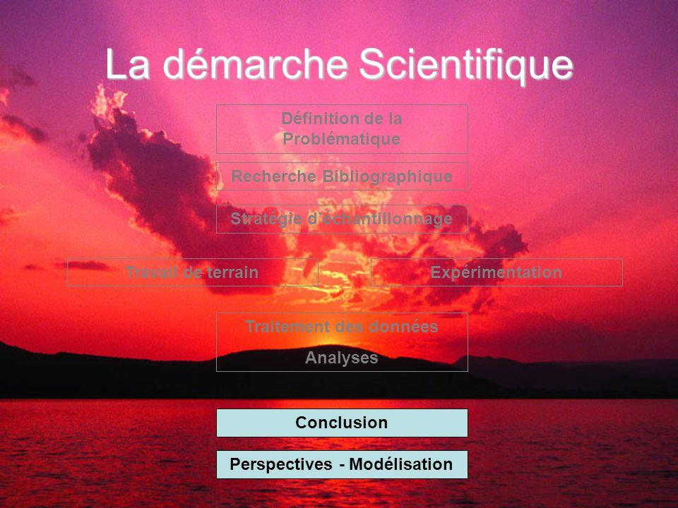 La démarche Scientifique Définition de la Problématique Recherche Bibliographique Stratégie d'échantillonnage Travail de terrainExpérimentation Traitement des données Analyses Conclusion Perspectives - Modélisation