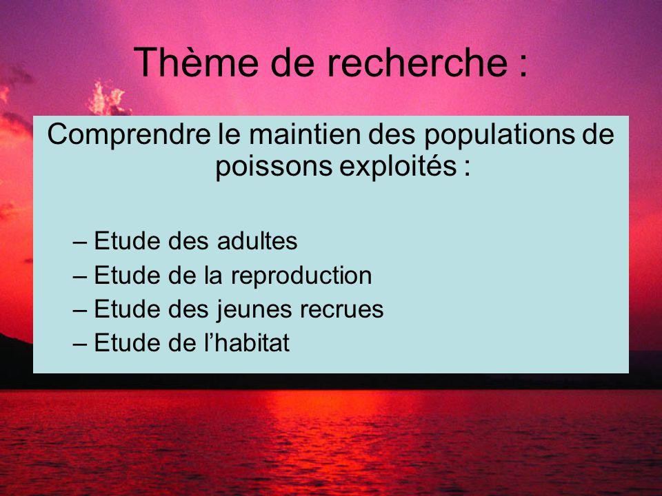 Thème de recherche : Comprendre le maintien des populations de poissons exploités : –Etude des adultes –Etude de la reproduction –Etude des jeunes recrues –Etude de l'habitat