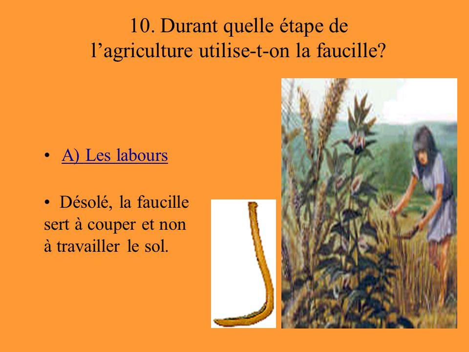 10. Durant quelle étape de l'agriculture utilise-t-on la faucille? A) Les labours Désolé, la faucille sert à couper et non à travailler le sol.