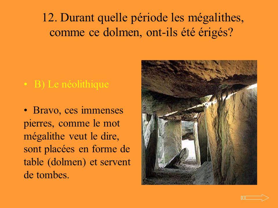 12. Durant quelle période les mégalithes, comme ce dolmen, ont-ils été érigés? B) Le néolithique Bravo, ces immenses pierres, comme le mot mégalithe v