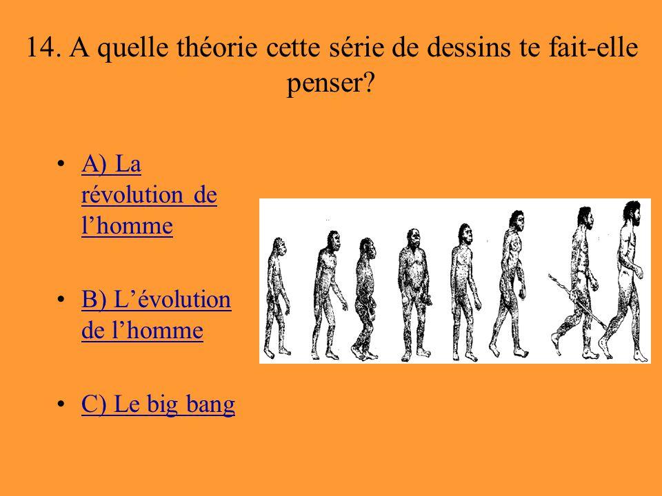 14. A quelle théorie cette série de dessins te fait-elle penser? A) La révolution de l'hommeA) La révolution de l'homme B) L'évolution de l'hommeB) L'