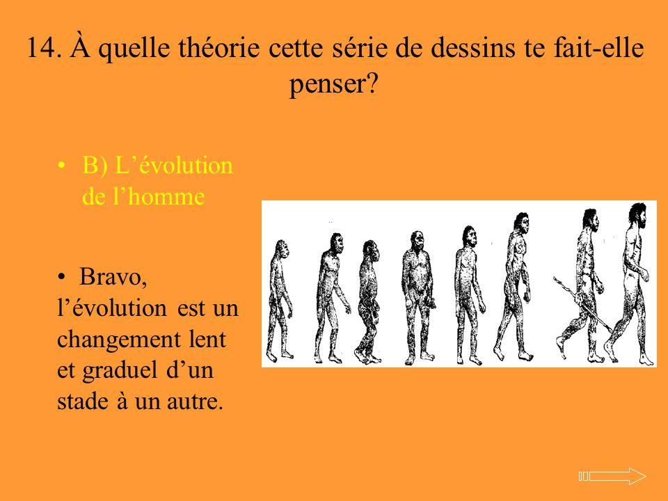 14. À quelle théorie cette série de dessins te fait-elle penser? B) L'évolution de l'homme Bravo, l'évolution est un changement lent et graduel d'un s