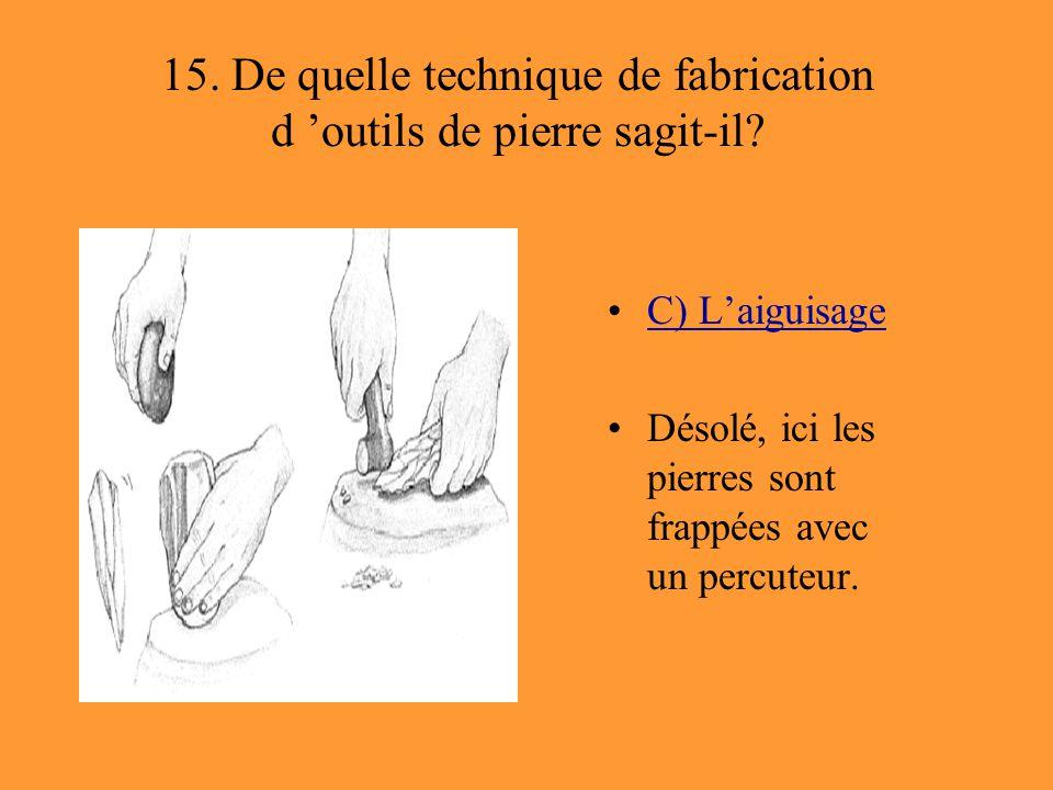 15. De quelle technique de fabrication d 'outils de pierre sagit-il? C) L'aiguisage Désolé, ici les pierres sont frappées avec un percuteur.