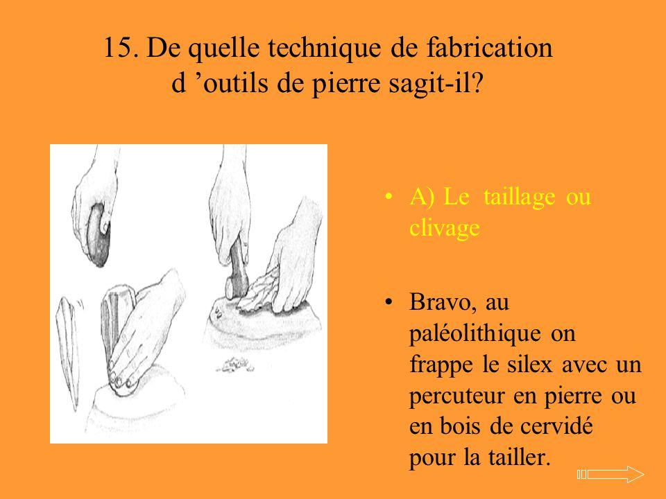 15. De quelle technique de fabrication d 'outils de pierre sagit-il? A) Le taillage ou clivage Bravo, au paléolithique on frappe le silex avec un perc