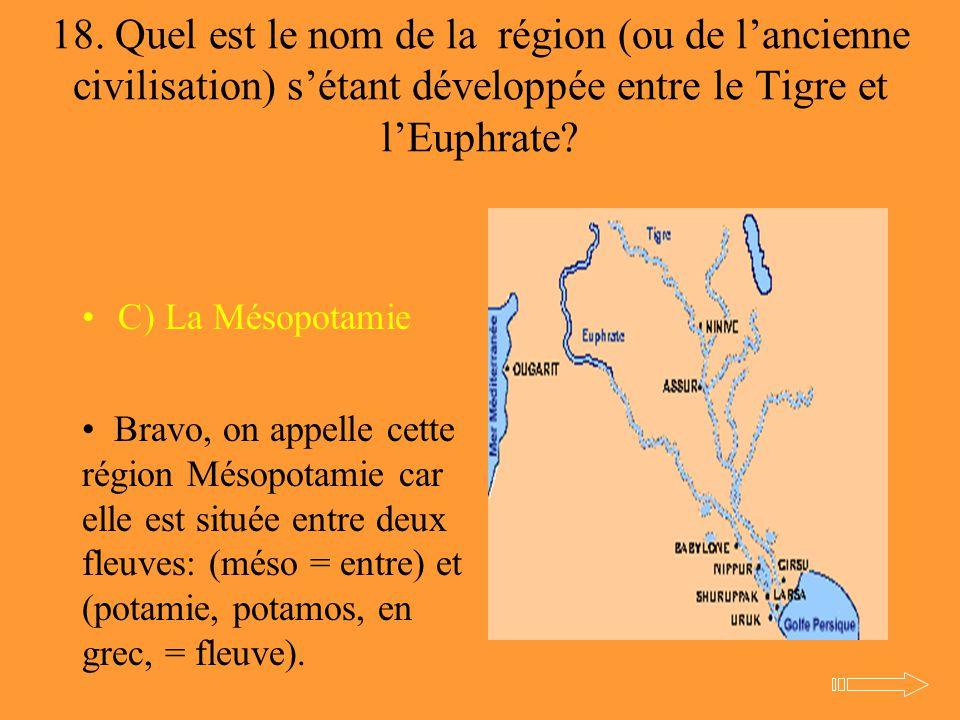 18. Quel est le nom de la région (ou de l'ancienne civilisation) s'étant développée entre le Tigre et l'Euphrate? C) La Mésopotamie Bravo, on appelle
