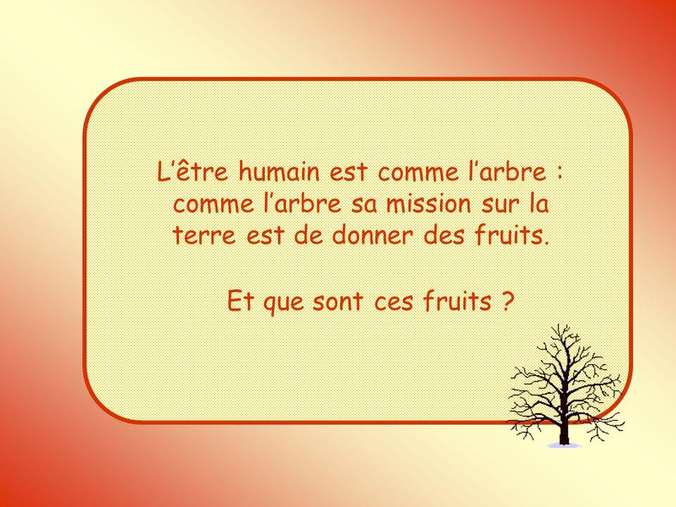 L'être humain est comme l'arbre : comme l'arbre sa mission sur la terre est de donner des fruits.