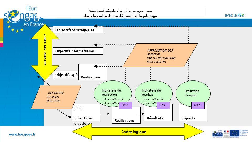 B7 Réalisations Objectifs Stratégiques Objectifs Opérationnels Objectifs Intermédiaires (OO) Intentions d'actions Réalisations RésultatsImpacts Indicateur de réalisation Indice d'efficacité Indice d'efficience Indicateur de résultat Indice d'efficacité Indice d'efficience Evaluation d'impact APPRECIATION DES OBJECTIFS PAR LES INDICATEURS POSES SUR DLI Suivi-autoévaluation de programme dans le cadre d'une démarche de pilotage DEFINITION DU PLAN D'ACTION Cible Cadre logique ARBRE DES OBJECTIFS