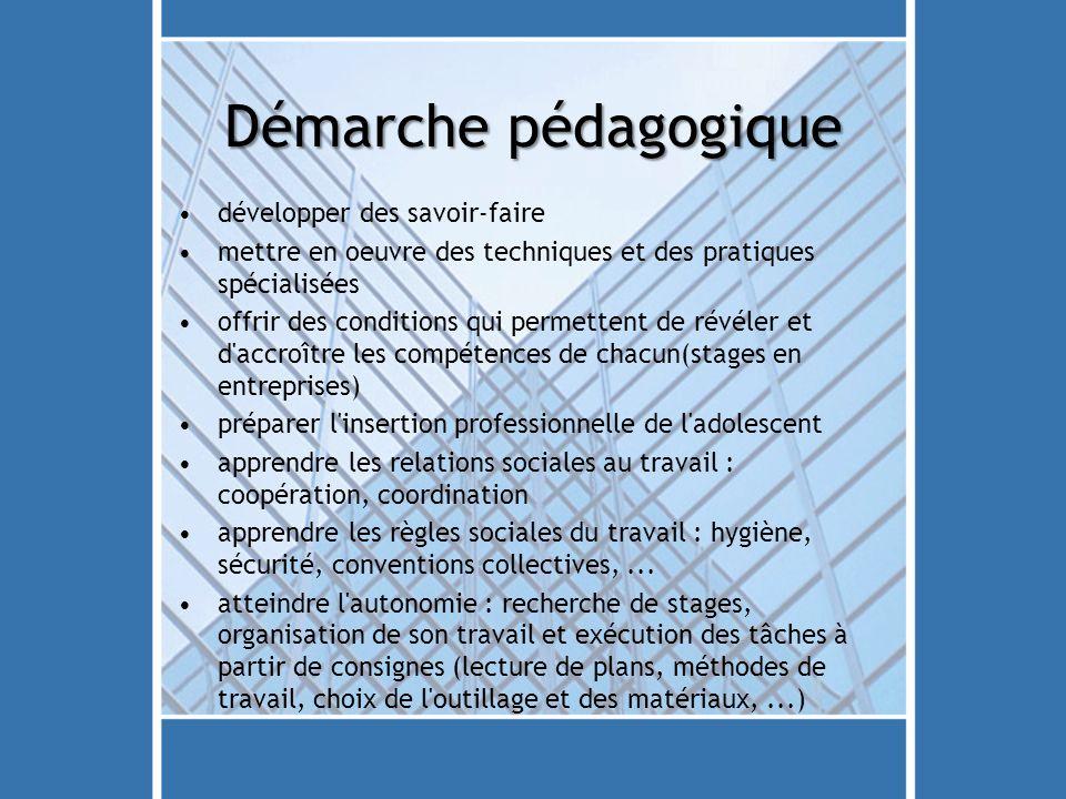 Démarche pédagogique développer des savoir-faire mettre en oeuvre des techniques et des pratiques spécialisées offrir des conditions qui permettent de