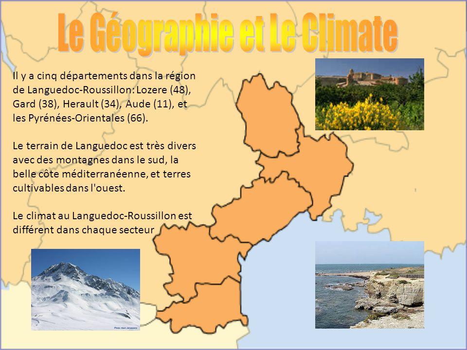 Il y a cinq départements dans la région de Languedoc-Roussillon: Lozere (48), Gard (38), Herault (34), Aude (11), et les Pyrénées-Orientales (66). Le