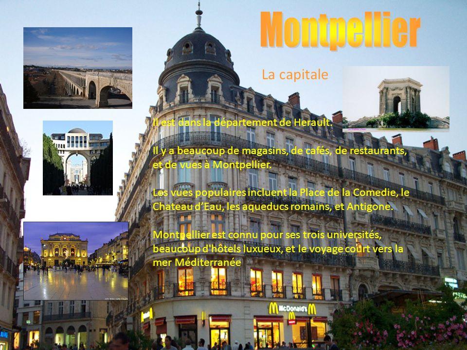 Il est dans la département de Herault. Il y a beaucoup de magasins, de cafés, de restaurants, et de vues à Montpellier. Les vues populaires incluent l