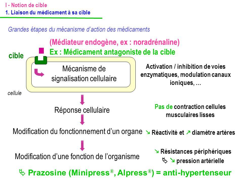 (Médiateur endogène, ex : noradrénaline) Ex : Médicament antagoniste de la cible cible cellule Mécanisme de signalisation cellulaire Activation / inhi
