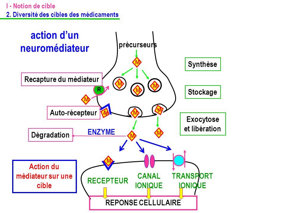 action d'un neuromédiateur M précurseurs Synthèse M M M Stockage M M M M M Exocytose et libération M R Recapture du médiateur Action du médiateur sur