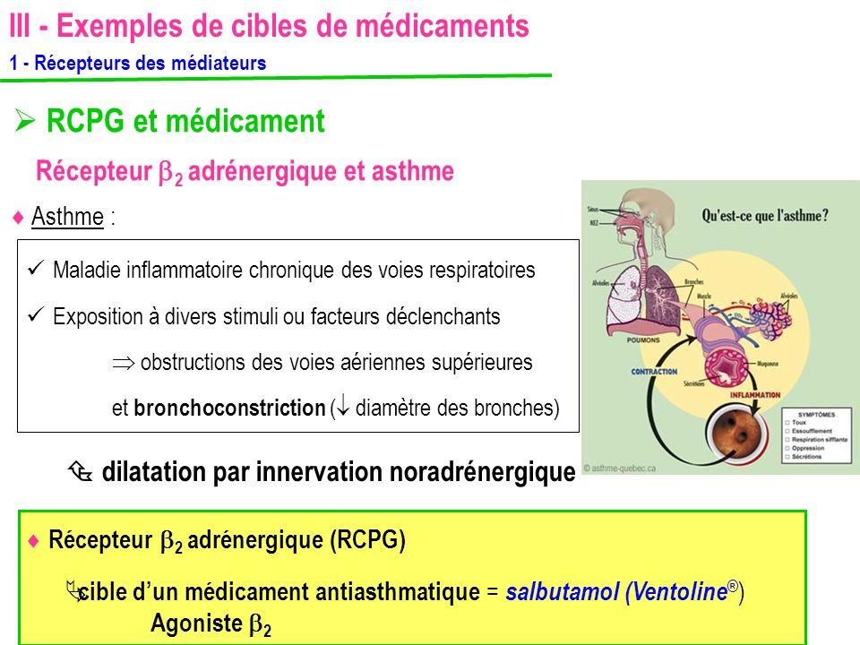  RCPG et médicament Récepteur  2 adrénergique et asthme  Récepteur  2 adrénergique (RCPG)  Asthme : Maladie inflammatoire chronique des voies res