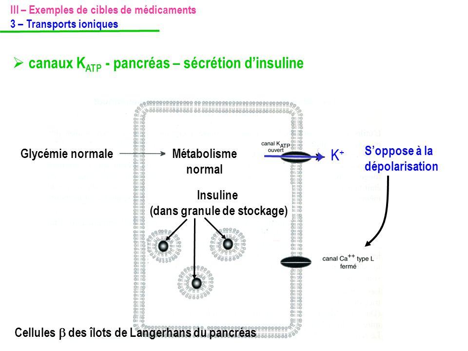 S'oppose à la dépolarisation Métabolisme normal Glycémie normale Insuline (dans granule de stockage) K+K+ Cellules  des îlots de Langerhans du pancré