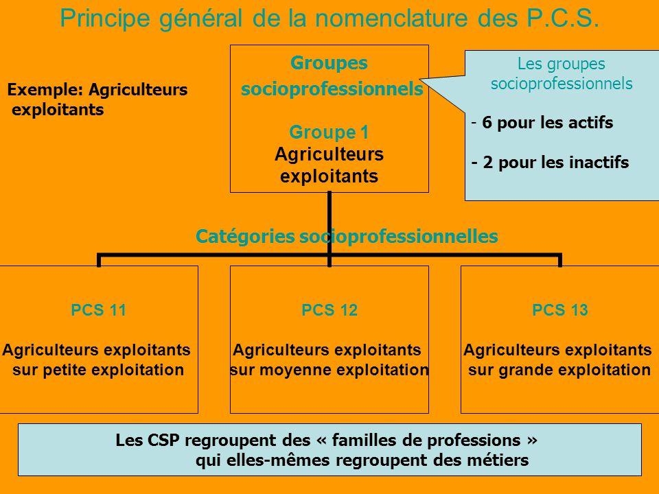 Principe général de la nomenclature des P.C.S. Professions Groupes socioprofessionnels Groupe 1 Agriculteurs exploitants PCS 11 Agriculteurs exploitan