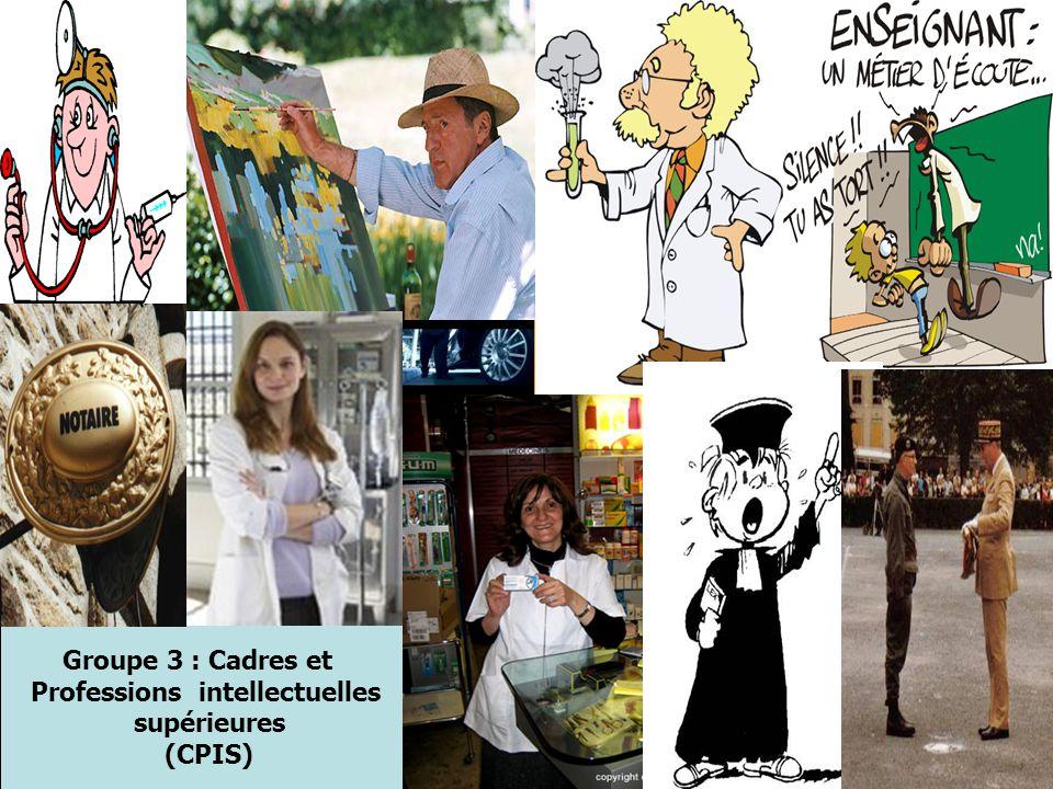 Groupe 3 : Cadres et Professions intellectuelles supérieures (CPIS)