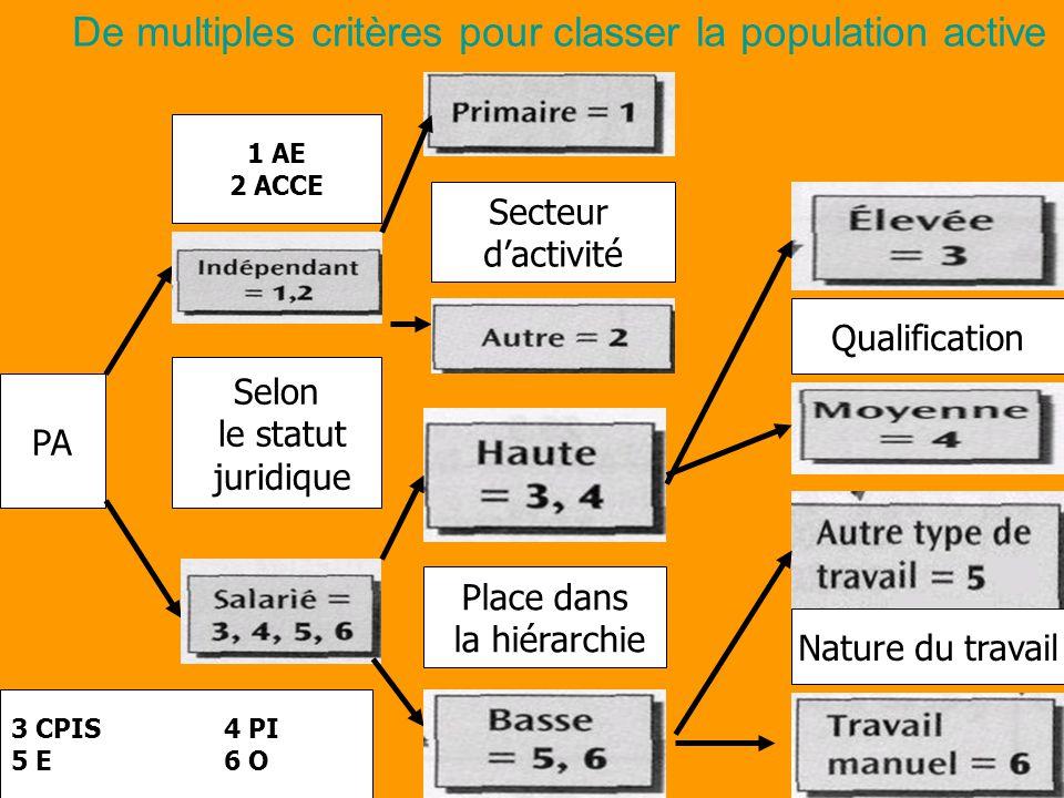 De multiples critères pour classer la population active PA Selon le statut juridique 1 AE 2 ACCE 3 CPIS4 PI 5 E6 O Secteur d'activité Place dans la hiérarchie Qualification Nature du travail