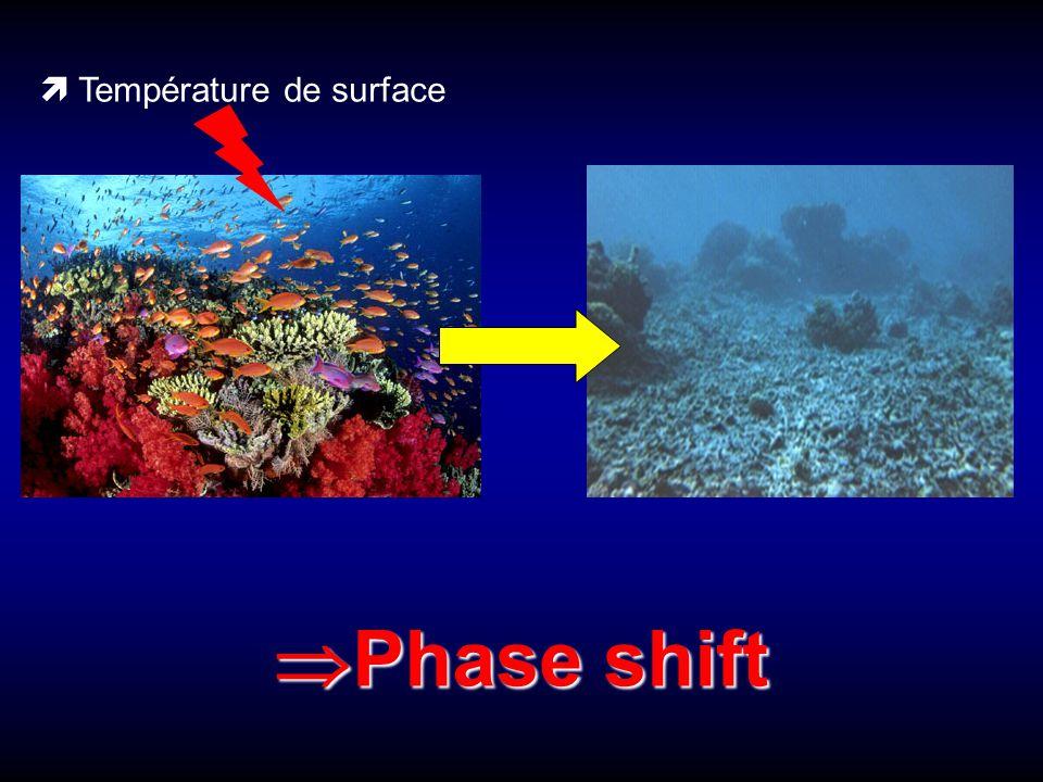  Température de surface  Phase shift