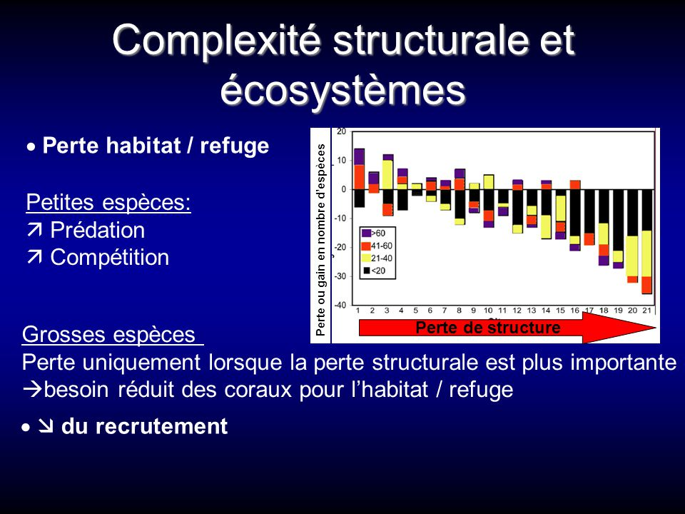 Complexité structurale et écosystèmes Grosses espèces Perte uniquement lorsque la perte structurale est plus importante  besoin réduit des coraux pou