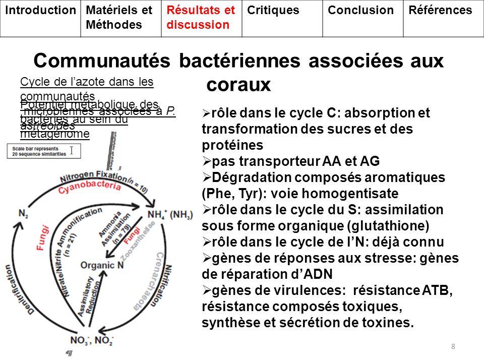 Communautés d'Archées associées aux coraux 9 Cycle de l'azote dans les communautés microbiennes associées à P.