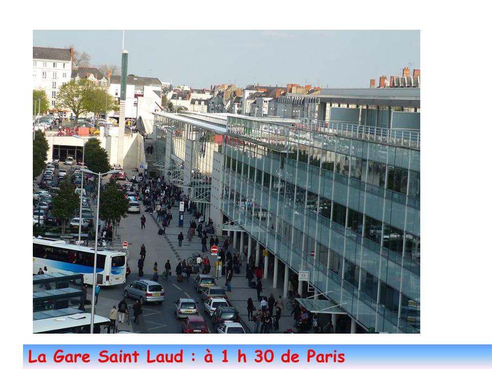 Angers et l'agglo : 250 000 habitants