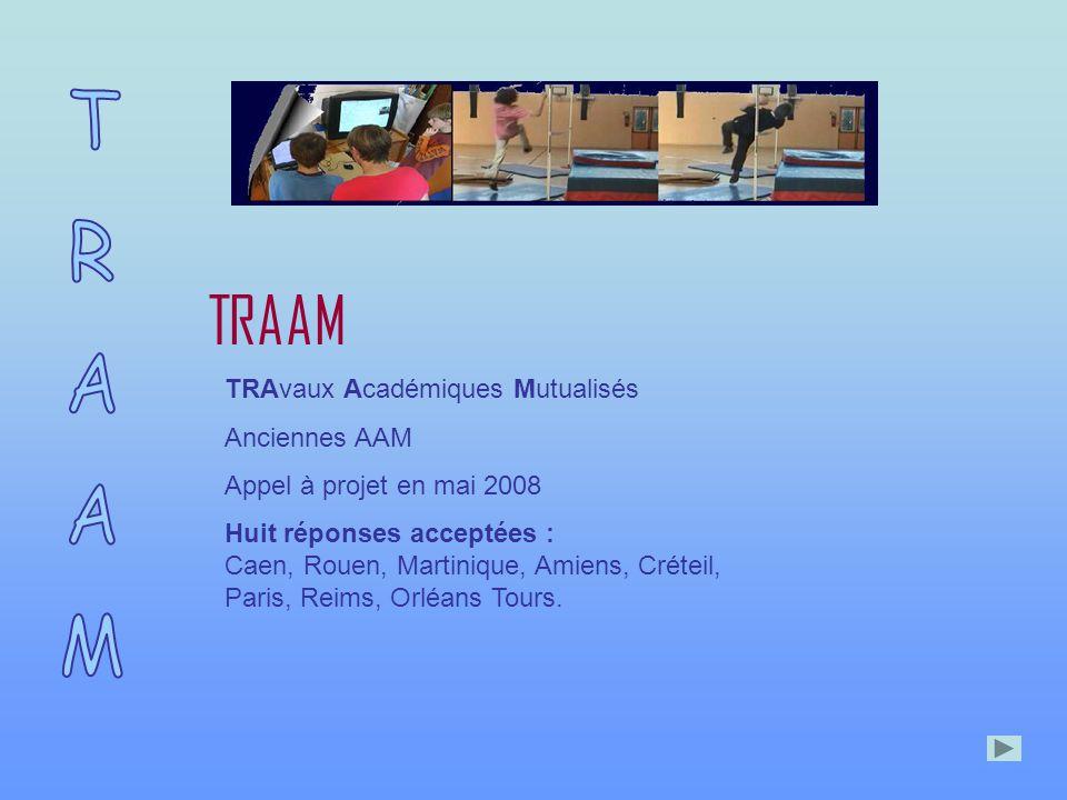 TRAAM TRAvaux Académiques Mutualisés Anciennes AAM Appel à projet en mai 2008 Huit réponses acceptées : Caen, Rouen, Martinique, Amiens, Créteil, Paris, Reims, Orléans Tours.