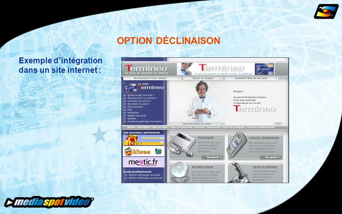 OPTION DÉCLINAISON Exemple d'intégration dans un site internet :