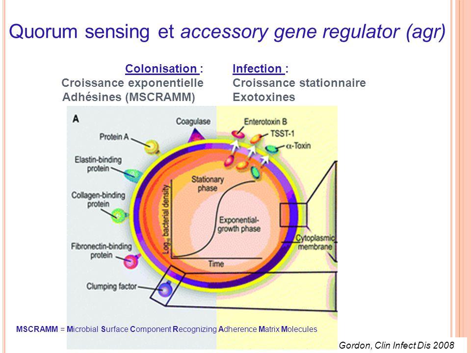 Quorum sensing et accessory gene regulator (agr) Gordon, Clin Infect Dis 2008 Colonisation : Croissance exponentielle Adhésines (MSCRAMM) Infection : Croissance stationnaire Exotoxines MSCRAMM = Microbial Surface Component Recognizing Adherence Matrix Molecules