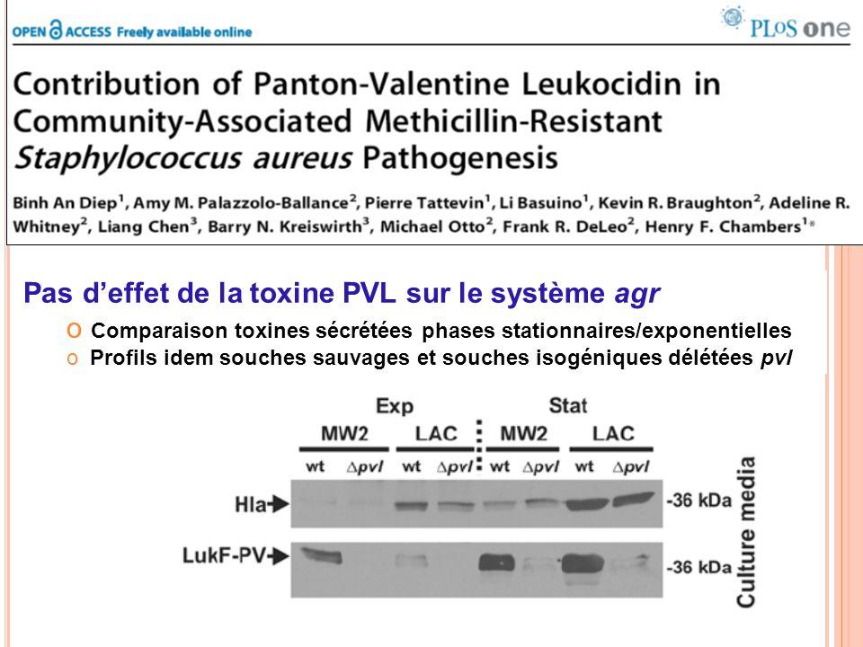Pas d'effet de la toxine PVL sur le système agr o Comparaison toxines sécrétées phases stationnaires/exponentielles o Profils idem souches sauvages et