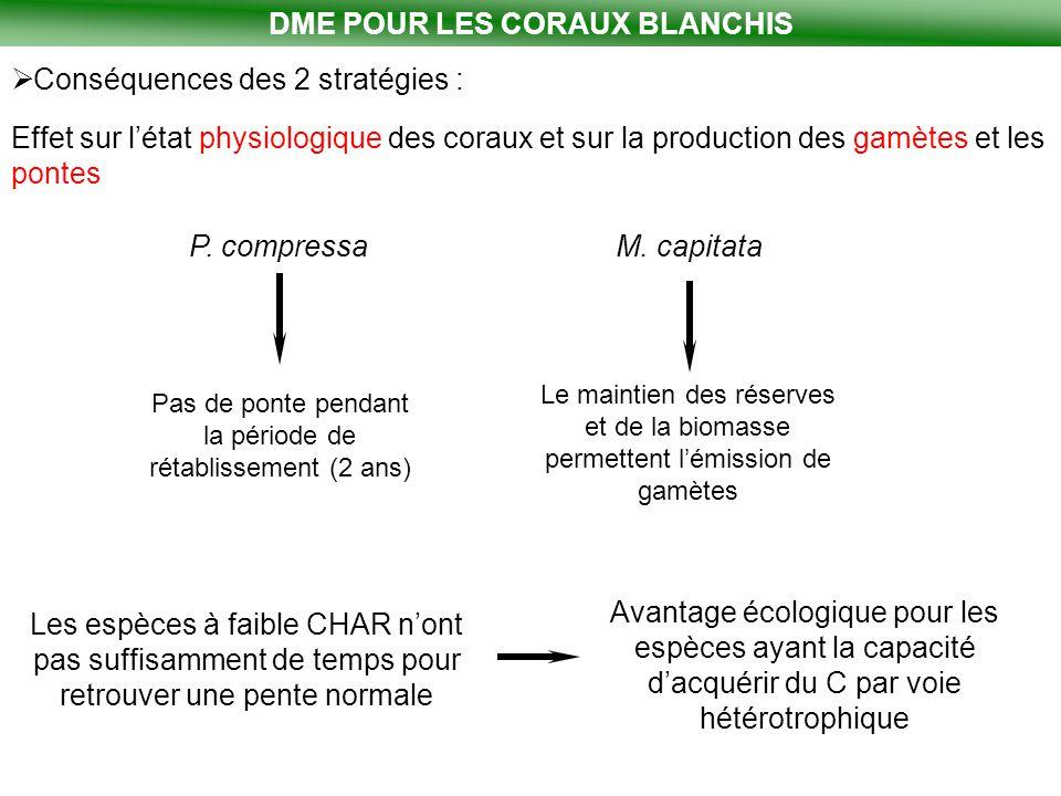 DME POUR LES CORAUX BLANCHIS  Conséquences des 2 stratégies : Effet sur l'état physiologique des coraux et sur la production des gamètes et les ponte