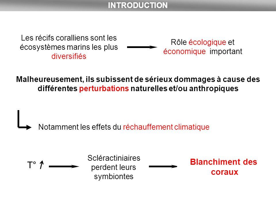 Face à ce phénomène, il y a 3 réponses des coraux Résistance Résilience Acclimatation 1)Résistance : Les coraux ne blanchissent pas.