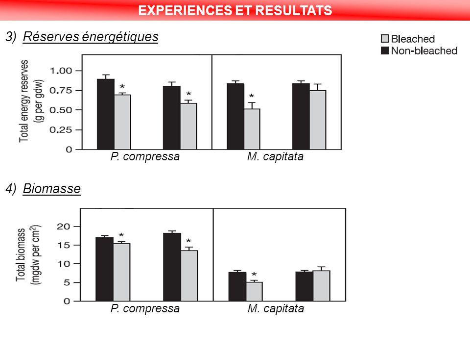 EXPERIENCES ET RESULTATS 3)Réserves énergétiques 4)Biomasse P. compressa M. capitata