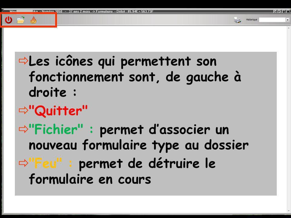  Les icônes qui permettent son fonctionnement sont, de gauche à droite :  Quitter  Fichier : permet d'associer un nouveau formulaire type au dossier  Feu : permet de détruire le formulaire en cours