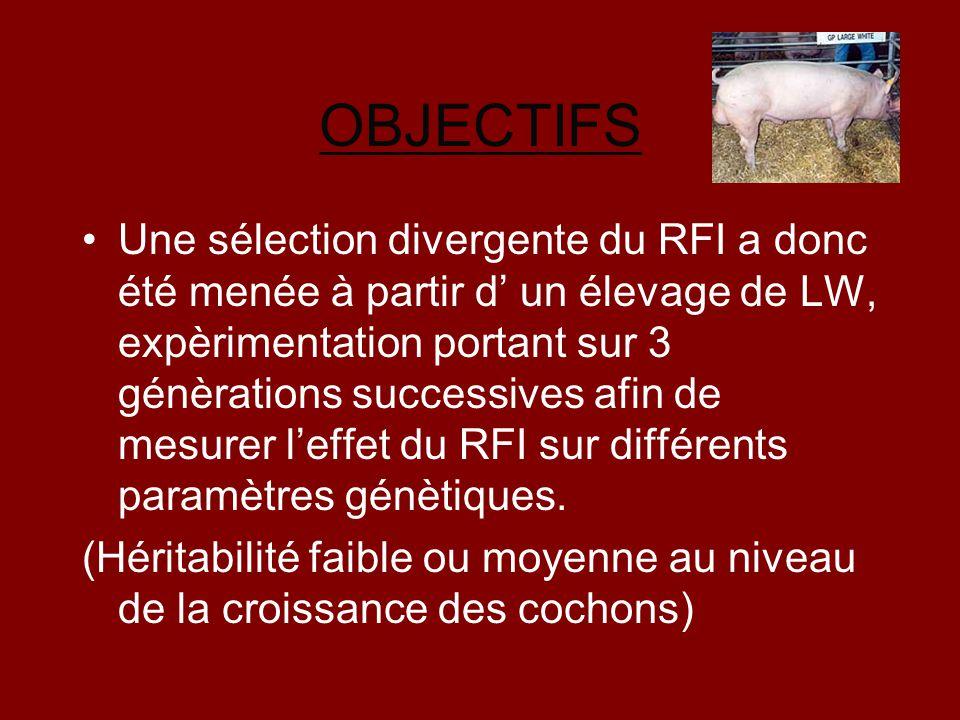 OBJECTIFS Une sélection divergente du RFI a donc été menée à partir d' un élevage de LW, expèrimentation portant sur 3 génèrations successives afin de
