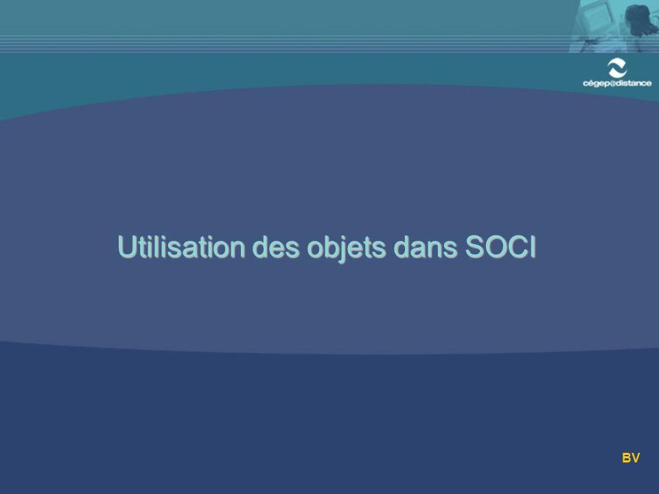 Utilisation des objets dans SOCI BV