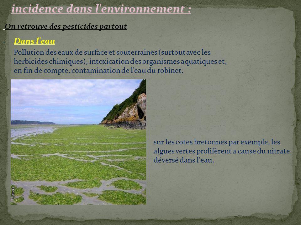 incidence dans l'environnement : On retrouve des pesticides partout. Dans l'eau sur les cotes bretonnes par exemple, les algues vertes prolifèrent a c