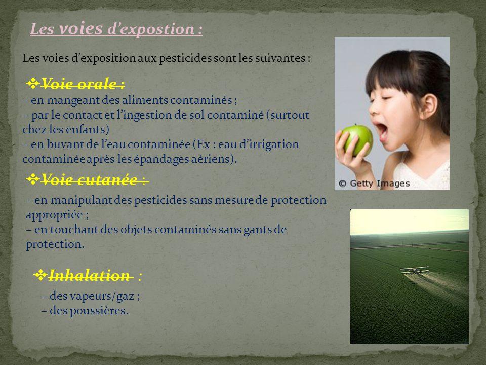 Les voies d'expostion : Les voies d'exposition aux pesticides sont les suivantes :  Voie orale : – en mangeant des aliments contaminés ; – par le con