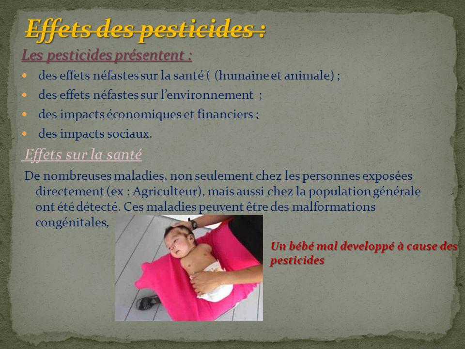 Les pesticides présentent : des effets néfastes sur la santé ( (humaine et animale) ; des effets néfastes sur l'environnement ; des impacts économique