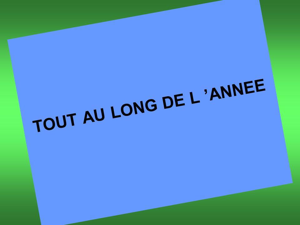 TOUT AU LONG DE L 'ANNEE