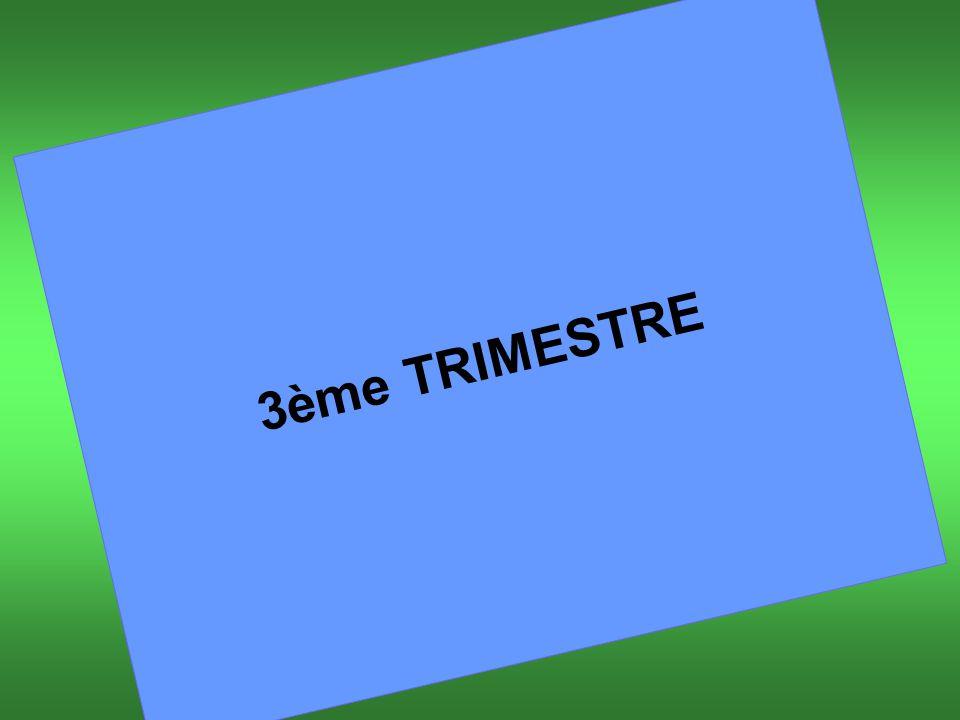 3ème TRIMESTRE