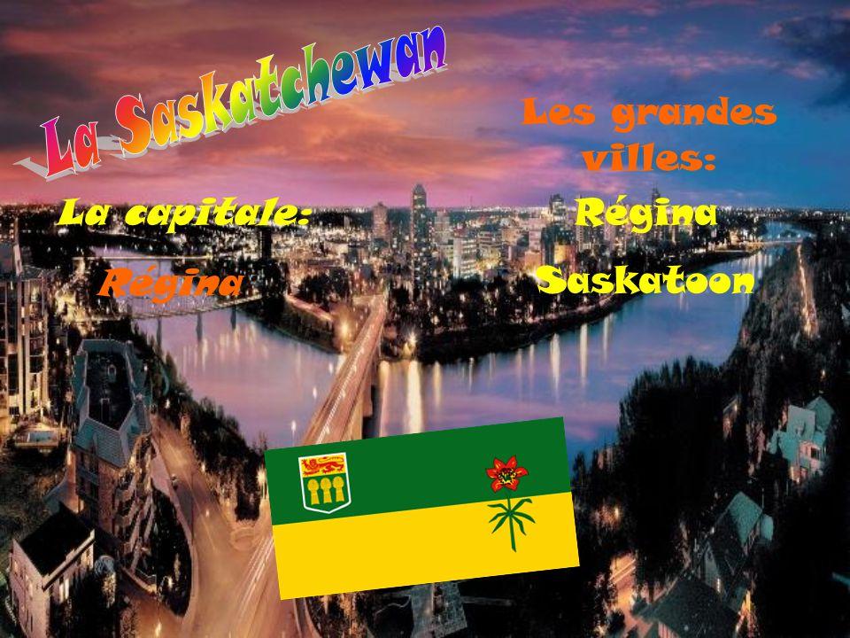 Une petite partie de la Saskatchewan a une végétation de forêt subarctique.La deuxième partie a une végétation de forêt boréale.