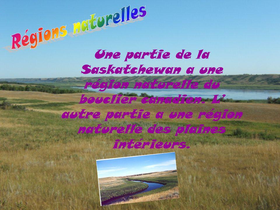 Une partie de la Saskatchewan a une région naturelle du bouclier canadien. L' autre partie a une région naturelle des plaines intérieurs.