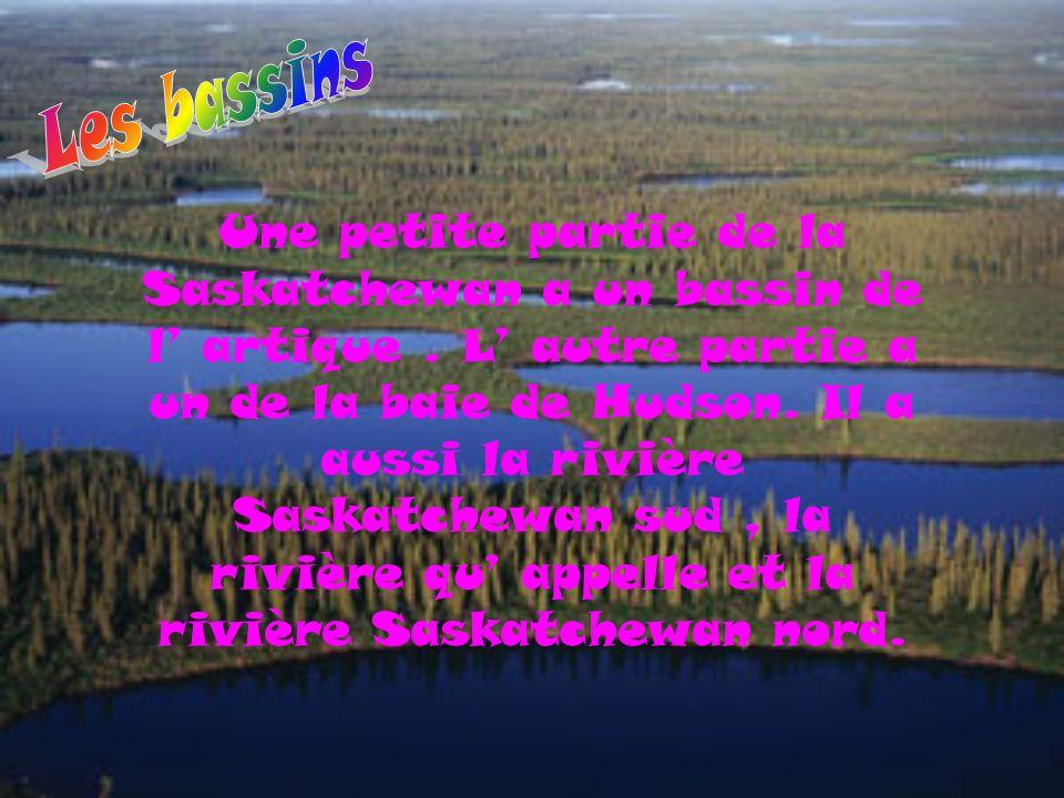 Une petite partie de la Saskatchewan a un bassin de l' artique. L' autre partie a un de la baie de Hudson. Il a aussi la rivière Saskatchewan sud, la