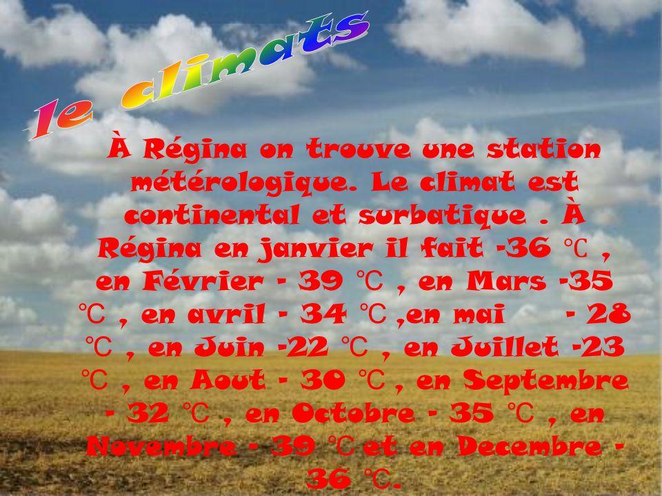 À Régina on trouve une station métérologique. Le climat est continental et surbatique. À Régina en janvier il fait -36 ℃, en Février – 39 ℃, en Mars -