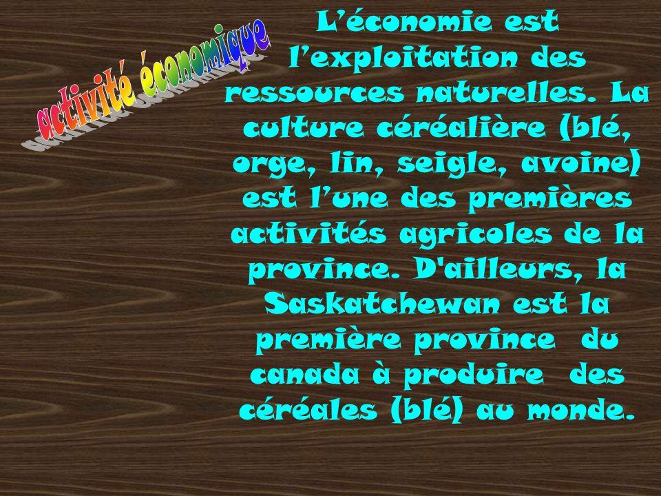 L'économie est l'exploitation des ressources naturelles. La culture céréalière (blé, orge, lin, seigle, avoine) est l'une des premières activités agri